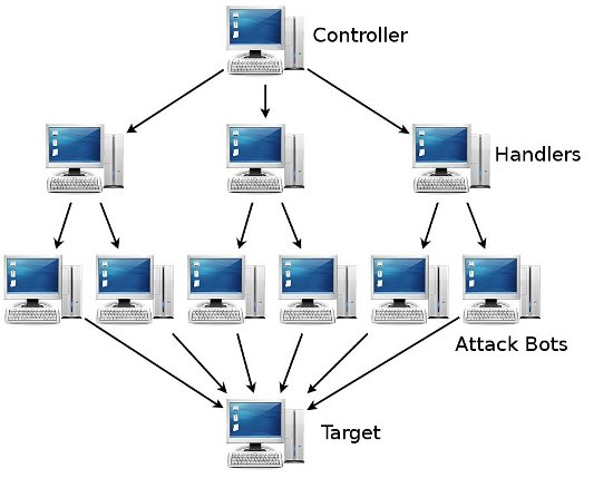 Network Attack Diagram  Internet And Network Attacks